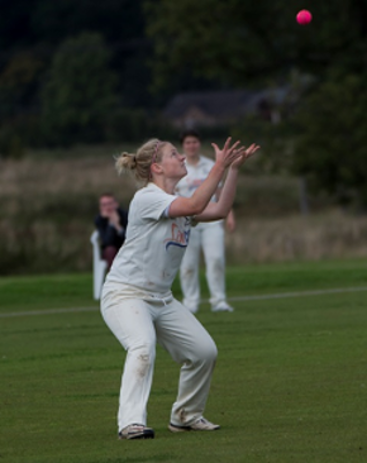 T20 Womens Cup